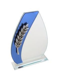 Economy Glass Awards